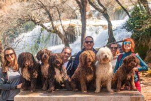 Spanish Water Dogs team